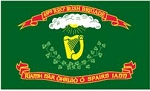 69th NY Irish Brigade Regiment