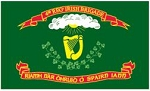 4th MA Irish Brigade Regiment