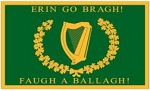 8th Alabama Irish Regiment 1964