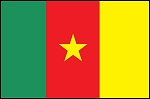 3'x5' Imported Cameroon Flag