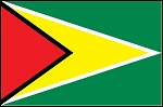 3'x5' Imported Guyana Flag