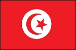 3'x5' Imported Tunisia Flag