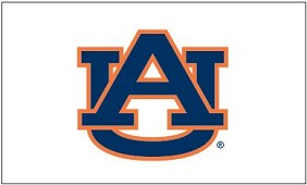 Auburn University Applique Flag 2'x3'