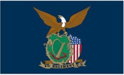 9th CT Infantry Regiment US Colors