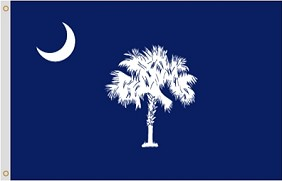 3'x5' South Carolina Nylon Flag