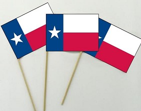"12""X18"" Texas Stick Flag"